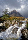 Stob Dearg, Buachaille Etive Mor, with the waterfalls in the course of the River Coupall in the foreground, Highlands of Scotland. Allan Wright / Scottish Viewpoin vertical,day,summer,sunny,sunshine,cloud,clouds,cloudy,Highland,Highlands,no people,nobody,Scottish,UK,U.K,Great,Britain,mountain,Buachaille,Etive,Mor,Stob,Dearg,waterfalls,River,Coupall,flow,flowing,