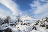 A snow covered Buachaille Etive Mor on a winter's day, Glen Coe, Highlands of Scotland. Chris Lauder / Scottish Viewpoin horizontal,outdoors,outside,day,winter,sunny,sunshine,blue sky,clouds,Buachaille Etive Mor,Glen Coe,Highlands,Scotland,Scottish,UK,U.K,Great Britain,nobody,snow,snowy,ice,frozen,mountain,munro