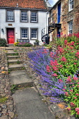 A courtyard garden in the village of Crail, East Neuk of Fife, Scotland Ross Graham/ Scottish Viewpoint Crail,Fife,East Neuk,uk,u.k,Great Britain,GB,G.B,Scotland,Scottish,nobody,summer,sunny,house,cottage,outdoors,outside,pantile roof,flowers,courtyard,steps,spiral staircase,daytime