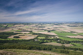 The view across rural farmland and fields of crops, Fife, Scotland. Allan Wright/ Scottish Viewpoint uk,u.k,Great Britain,GB,G.B,Scotland,Scottish,Fife,nobody,outdoors,daytime,summer,sunny,farmland,patchwork fields,crops,tree,trees,wood,woodland,woods,forests,forest,aerial,farming