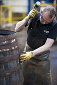 A worker with a cask at the Balvenie Distillery in Dufftown, Moray, Scotland. John Paul / Scottish Viewpoint horizontal,outside,outdoors,Balvenie Distillery,Dufftown,Moray,Scotland,Scottish,UK,U.K,Great Britain,1 person,one man only,40-50 years,single malt,whisky,Speyside,process,production,manufacture,cask,