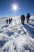 A group of walkers crossing a snowy plateau in the Cairngorm National Park, Highlands of Scotland. John Paul / Scottish Viewpoint vertical,outside,outdoors,exterior,winter,day,sunny,sunshine,blue sky,sunburst,Scotland,Scottish,UK,U.K,Great Britain,people,group,activity,walk,walking,walker,hill,hillwalker,hillwalking,hiker,hike,h