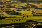Four golfers on a green in late evening sunshine at the Royal Dornoch Golf Club, Highlands of Scotland John Paul / Scottish Viewpoint uk,u.k,Great Britain,GB,G.B,Scotland,Scottish,day,Highlands,outdoors,summer,sunny,4 people,Royal Dornoch Golf Club,course,golf,golfers,golf club,golf trolley,golfing,green,flag