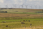 Westfield wind farm, Caithness, Highlands of Scotland Mark Ferguson/ Scottish Viewpoin wind,clean,air,graceful,power,electricity. nobody,day time,spring,outdoors,energy,green,renewable,renewables,sustainable,turbine,turbines,farm,windfarm,windfarms,uk,u.k,Great Britain,GB,G.B,Scotland,S