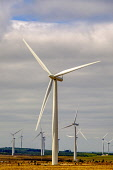 Wind turbines in South Lanarkshire, Scotland Andrew Wilson/ Scottish Viewpoin wind,clean,air,graceful,power,electricity. nobody,day time,spring,outdoors,energy,green,renewable,renewables,sustainable,turbine,turbines,farm,windfarm,windfarms,uk,u.k,Great Britain,GB,G.B,Scotland,S