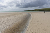 A solo figure walking on the beach at Waulkmill Bay, Orkney, Scotland Chris Lauder/ Scottish Viewpoint uk,u.k,Great Britain,GB,G.B,Scotland,Scottish,1 person,daytime,outdoors,summer,orkney,Waulkmill Bay,beach,beaches,sand,sandy,coast,coastal,coastline,water,sea