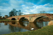 The Nungate Bridge and the River Tyne, Haddington, East Lothian, Scotland Keith Fergus/ Scottish Viewpoint uk,u.k,Great Britain,GB,G.B,Scotland,Scottish,nobody,daytime,outdoors,haddington,river tyne,swan,swans,nungate bridge,east lothian