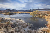 Lochan na h-Achlaise captured on a frosty morning. Looking towards a snowy Black Mount across Rannoch Moor, Highlands of Scotland Andrew Ray/ Scottish Viewpoint uk,u.k,Great Britain,GB,G.B,Scotland,Scottish,nobody,daytime,outdoors,winter,snow,frosty,highland,highlands,rannoch moor,black mount,Lochan na h-Achlaise,frozen,water
