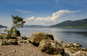 Looking over Loch Ness from the eastern shore near Foyers, Highlands of Scotland Andrew Wilson/ Scottish Viewpoin uk,u.k,Great,Britain,GB,G.B,Scotland,Scottish,nobody,daytime,outdoors,summer,Highlands of Scotland,Loch Ness,coast,coastal,coastline,water