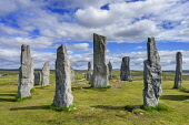 Callanish (gaelic Calanais)  Stones at Callanish village on Isle of Lewis in the Outer Hebrides in Scotland Iain Masterton / Scottish Viewpoint Callanish,stones,standing,Calanais,Isle of Lewis,Scotland,Scottish,Megalithic,monument,monuments,Outer,Hebrides,travel,tourism,historic,site,United Kingdom,British,Isles,ancient,Britain,Nobody,summer,