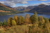 A view over Loch Dutch and the Kintail Hills, Highlands of Scotland Tony Hardley / Scottish Viewpoint uk,u.k,Great Britain,GB,G.B,Scotland,Scottish,nobody daytime,outdoors,autumn,kintail,loch duich,highland,highlands,mountain,mountains,hill,hills,autumnal