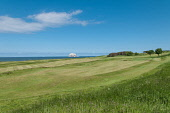 North Berwick Golf Course with the Bass rock in the background, North Berwick East Lothian Scotland D.G.Farquhar/ Scottish Viewpoint Bass Rock,Britain,East Lothian,GB,Golf,Great Britain,North Berwick,North Berwick Golf Course,Scotland,UK,sport