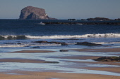 The Bass Rock and North Berwick beach, East Lothian, Scotland Ian Macrae Young/ Scottish Viewpoint uk,u.k,Great Britain,GB,G.B,Scotland,Scottish,nobody,daytime,outdoors,east lothian,coast,coastal,coastline,water,sea,north berwick,bass rock,beach