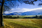 Winter landscape in the Scottish Borders near Broughton, Scotland Andrew Wilson/ Scottish Viewpoint uk,u.k,Great Britain,GB,G.B,Scotland,Scottish,nobody,daytime,outdoors,cold,landscape,snow,snowy,sunny,winter,southern uplands,Scottish Borders,Broughton