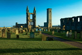 St AndrewÕs Cathedral and St RuleÕs Tower, St Andrews, Fife, Scotland Keith Fergus/ Scottish Viewpoint uk,u.k,Great Britain,GB,G.B,Scotland,Scottish,nobody,daytime,outdoors,fife,st andrews,cathedral,rules,tower,church,ruins,ruined,history,heritage,historic,graves,graveyard