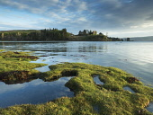 View across river estuary to Aros Castle on Isle of Mull, Inner Hebrides , Scotland Allan Coutts/ Scottish Viewpoint uk,u.k,Great Britain,GB,G.B,Scotland,Scottish,nobody,daytime,Isle of Mull,Salen,aros,attraction,castle,coast,coastal,color,colorful,colour,colourful,historic,history,horizontal,mull,picture,picturesqu