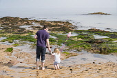 Father and young daughter exploring rock pools on beach at North Berwick on Forth Estuary in East Lothian, Scotland, United Kingdom. Iain Masterton/ Scottish Viewpoint North Berwick,town,beach,recreation,leisure,activity,family,father and daughter,rock pools,waterfront,paddling,paddle,seaside,seafront,activities,East Lothian,Scotland,Scottish,daytime,outdoors,view,U