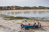View of  North Berwick on Forth estuary in East Lothian, Scotland, United Kingdom. Iain Masterton/ Scottish Viewpoint North Berwick,town,beach,beaches,waterfront,seafront,activities,East Lothian,Scotland,Scottish,daytime,outdoors,view,UK,United Kingdom,Britain,British