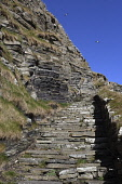 whaligoe steps,fish wives steps,near wick,caithness, Highlands of Scotland Mark Hicken/ Scottish Viewpoint uk,u.k,Great Britain,GB,G.B,Scotland,Scottish,nobody,daytime,outdoors,whaligoe,steps,fish wives,steep,near wick,caithness