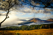 Looking towards Loch Tulla on a misty autumn morning, Highlands of Scotland Andrew Wilson/ Scottish Viewpoint uk,u.k,Great Britain,GB,G.B,Scotland,Scottish,nobody,daytime,outdoors,Loch Tulla,low cloud,misty,panorama,viewpoint,mist