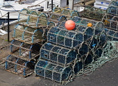 Lobster pots at Crail Harbour, Fife, Scotland Ian Macrae Young/ Scottish Viewpoint uk,u.k,Great Britain,GB,G.B,Scotland,Scottish,nobody,daytime,outdoors,Lobster pots,creels,Crail harbour,East Neuk of Fife,lobster,fishing