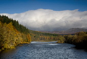 The river Tay near Dunkeld in Autumn, Perthshire, Scotland Ian Macrae Young/ Scottish Viewpoint uk,u.k,Great Britain,GB,G.B,Scotland,Scottish,nobody,daytime,outdoors,River Tay,Autumn,colours,Dunkeld,Tayside,Perthshire,river,woodland,trees,tree,forest,forests