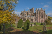 Melrose Abbey Melrose Scottish Borders Scotland D.G.Farquhar/Scottish Viewpoint uk,u.k,Great Britain,GB,G.B,Scotland,Scottish,nobody,daytime,outdoors,Abbey,Autumn,Autumn colors,Fall,Graveyard,Religion,Scottish Borders,melrose