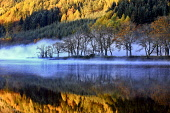 Loch Lubnaig, Scotland Tim Perceval/Scottish Viewpoint uk,u.k,Great Britain,GB,G.B,Scotland,Scottish,nobody,daytime,outdoors,reflections,autumn,blue,mist,misty,colours,water