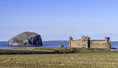 View of Tantallon Castle and Bass Rock in East Lothian, Scotland, United Kingdom Iain Masterton /Scottish Viewpoint Tantallon castle,Bass Rock,East Lothian,Scotland,Scottish,blue sky,daytime,nobody,travell tourism,landscape,scottish heritage,Scottish landscape,castle,Tantallon castle scotland,histoic scotland,UK,un