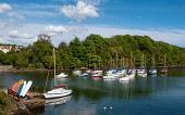 Yachts in harbour at Aberdour village in Fife, Scotland, UK Iain Masterton /Scottish Viewpoint Aberdour,village,seafront,promenade,Fife,Scotland,Scottish,villages,uk,united kingdom,britain,british,daytime,firth of forth,boats sailing boats,harbours,nobody