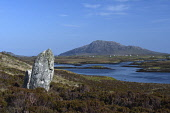 pobull finn;finn's people;stone circle;loch langass;north uist;scotland Mark Hicken /Scottish Viewpoint uk,u.k,Great Britain,GB,G.B,Scotland,Scottish,nobody,daytime,outdoors,pobull fhinn,pobull finn,finn's people,standing stones,stone circle,stones,loch langass,north uist