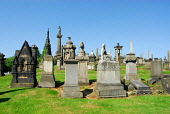 THE NECROPOLIS - AN EXTENSIVE CEMETERY SPRAWLING OVER A HILLSIDE EAST OF GLASGOW CITY CENTRE. Chris Robson /Scottish Viewpoint ARCHITECTURE,TOMB,SUNNY,SUMMER,RELIGION,MONUMENT,HERITAGE,GRAVES,GENEALOGY,NECROPOLIS