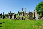 THE NECROPOLIS - AN EXTENSIVE CEMETERY SPRAWLING OVER A HILLSIDE EAST OF GLASGOW CITY CENTRE. Chris Robson /Scottish Viewpoint ARCHITECTURE,TOMB,SUNNY,SUMMER,RELIGION,MONUMENT,HERITAGE,GRAVES,GENEALOGY,NECROPOLIS,1 person