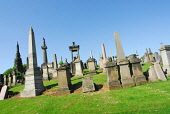 THE NECROPOLIS - AN EXTENSIVE CEMETERY SPRAWLING OVER A HILLSIDE EAST OF GLASGOW CITY CENTRE. Chris Robson /Scottish Viewpoint ARCHITECTURE,GENEALOGY,GRAVES,HERITAGE,MONUMENT,RELIGION,SUMMER,SUNNY,TOMB,NECROPOLIS