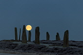 Moon over Ring of  Brodgar, Orkney, Scotland Mark Ferguson /Scottish Viewpoint uk,u.k,Great Britain,GB,G.B,Scotland,Scottish,nobody,night,outdoors,island,islands,isle,isles,nighttime,stone circle,stone,age,ancient,heritage,historic,megalithic,megalith,standing,stones,orkney,worl