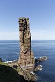 Old Man of  Hoy , Orkney , Scotland Mark Ferguson /Scottish Viewpoint uk,u.k,Great Britain,GB,G.B,Scotland,Scottish,nobody,daytime,outdoors,island,islands,isle,isles,coast,coastal,coastline,water,sea,cliffs,cliff,stack,stac,old,man,hoy,orkney,summer,walker,walking,walke