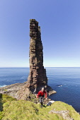 Old Man of  Hoy , Orkney , Scotland Mark Ferguson /Scottish Viewpoint uk,u.k,Great Britain,GB,G.B,Scotland,Scottish,1 person,daytime,outdoors,island,islands,isle,isles,coast,coastal,coastline,water,sea,cliffs,cliff,stack,stac,old,man,hoy,orkney,summer,walker,walking,wal