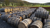 View of whisky barrels at Lindores Abbey Distillery in Newburgh, Fife, Scotland, UK Iain Masterton /Scottish Viewpoint Lindores Abbey Distillery,scotch whisky distillery,scotch whisky industry,Lindores scotch whisky distillery,Scotland,Scottish,UK,United Kingdom,building exterior,distilleries,newburgh,Fife. building e