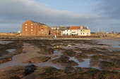 View of North Berwick harbour buildings from West Bay beach at low tide on autumn afternoon, East Lothian,Scotland ,UK. Iain Masterton /Scottish Viewpoint North Berwick,Scotland,Scottish,town,west bay North Berwick,view,harbour,beach,afternoon,sun,low tide,East Lothian,UK,united Kingdom,Britain,British,coastal,towns,scenic,travel destinations,people