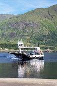 Looking across Loch Linnhe at Onich Corran Ferry, Fort William, Highland Region, Scotland UK Dennis Barnes /Scottish Viewpoint uk,u.k,Great Britain,GB,G.B,Scotland,Scottish,people,daytime,outdoors,highlands,Loch,Linnhe,Onich,Corran,car,Ferry,narrows,Ardgour,Peninsula,Fort,William,Highland,Region