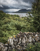Loch Assynt, Sutherland, looking east Alan Gordon/Scottish Viewpoint Assynt,National Scenic Area,North Coast 500,Scotland,Sutherland,atmospheric,bracken,clouds,cloudy,dramatic,drystone,hills,lake,landscape,loch,mountains,nobody,overcast,shower,sky,stone,summer,tree,tre