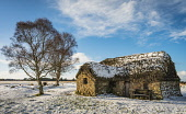 Leanach Cottage, Culloden Battlefield, Inverness Alan Gordon/Scottish Viewpoint Battlefield,Culloden,Highlands,Inverness,Jacobite,Scotland,afternoon,atmospheric,building,cottage,historic,house,landscape,listed,moor,nobody,old,protected,restored,snow,stone,sun,sunlight,thatch,tree