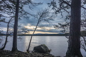 Evening at Loch Garten, Cairngorms National Park Alan Gordon/Scottish Viewpoint Abernethy,Cairngorms,Highlands,Loch Garten,National Park,Nature Reserve,SSSI,Scotland,atmospheric,autumn,clouds,cloudy,dramatic,evening,hills,lake,landscape,loch,mountains,nature,nature conservation,n