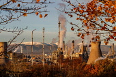 The Oil refinery at Grangemouth  on a crisp winters evening as the sun sets. Jason Baxter /Scottish Viewpoint uk,u.k,Great Britain,GB,G.B,Scotland,Scottish,nobody,daytime,outdoors,chemical plant,chemicals,complex,dusk,energy,gas,grangemouth,grangemouth refinery,industrial,industrial complex,industry,oil,petro