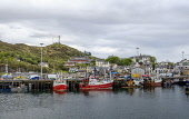 Fishing boats in the harbour in Mallaig on the west coast of Scotland Andrew Wilson/Scottish Viewpoint uk,u.k,Great Britain,GB,G.B,Scotland,Scottish,group,daytime,outdoors,Mallaig,fishing boats,harbour,west coast,coast,coastal,coastline,water,sea,town,highlands