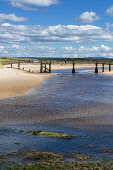 Lossiemouth beach, River Lossie, wooden bridge, Moray Firth,  Highland Region, Scotland UK Dennis Barnes/Scottish Viewpoint uk,u.k,Great Britain,GB,G.B,Scotland,Scottish,group,daytime,Lossiemouth,beach,sands,River,Lossie,wooden,bridge,Moray Firth,Moray,Firth,beaches,sand,sandy,coast,coastal,coastline,water,sea