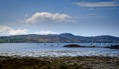 Yachts anchored in Loch nan Ceall off the village of Arisaig on the west coast of Scotland Andrew Wilson/Scottish Viewpoint uk,u.k,Great Britain,GB,G.B,Scotland,Scottish,nobody,daytime,outdoors,Arisaig,Coastal,Loch nan Ceall,anchorage,boating,boats,calm,coast,highlands,pleasure craft,sea loch,tidal,west coast,yachts,coastl