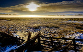 Low cloud on a cold winter's day, South Lanarkshire near Biggar Andrew Wilson/Scottish Viewpoint uk,u.k,Great Britain,GB,G.B,Scotland,Scottish,nobody,daytime,outdoors,winter,cold,frosty,low cloud,foggy scotch mist,wintery,rural,weather,winter weather,South Lanarkshire,Biggar