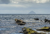 Seals on rocks at Kildonan with Ailsa Craig in background Allan Wright/Scottish Viewpoint uk,u.k,Great Britain,GB,G.B,Scotland,Scottish,nobody,daytime,outdoors,sunny,bright,cool,blue,ayrshire and arran,islets,rocks,sea,shore,waves,comical,ailsa craig,arran,kildonan,bennan,firth of clyde,ir