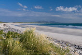 Beach at Baleshare, North Uist Allan Wright/Scottish Viewpoint uk,u.k,Great Britain,GB,G.B,Scotland,Scottish,nobody,daytime,outdoors,blue sky,bright,enchanting,graceful,hebridean,peaceful,pretty,summer,sunny,white,clouds,blue,grey,gray,marran grass,bay,beach,dune